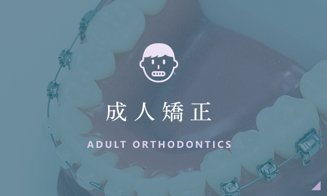 成人矯正 ADULT ORTHODONTICS