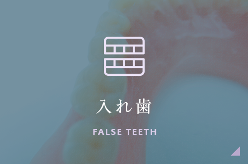 入れ歯 FALSE TEETH